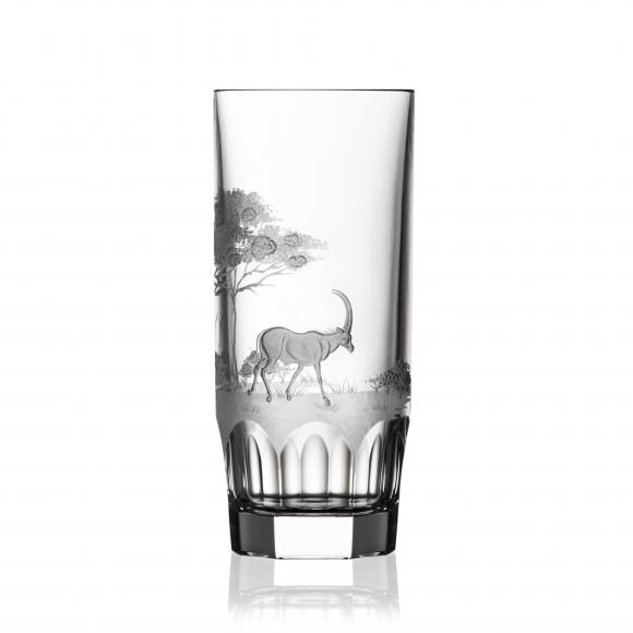 Safari Clear Highball