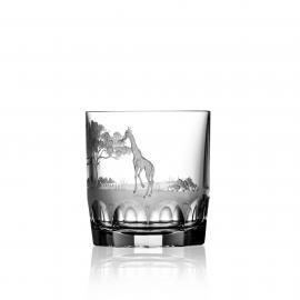Safari Clear D.O.F. Giraffe