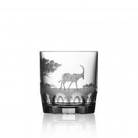 Safari Clear D.O.F.  Antelope