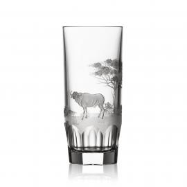 Safari Clear Highball Buffalo